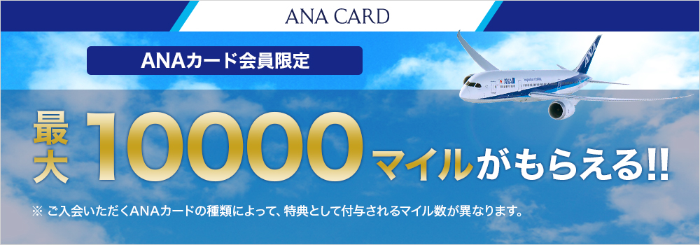 ANA View Suica