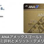 ANAアメックス(AMEX)ゴールドカードの評判とメリットデメリット!