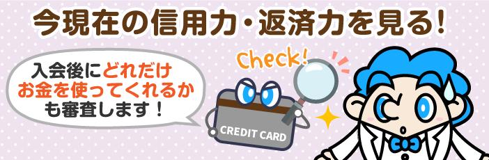 独自審査のクレジットカードとは?